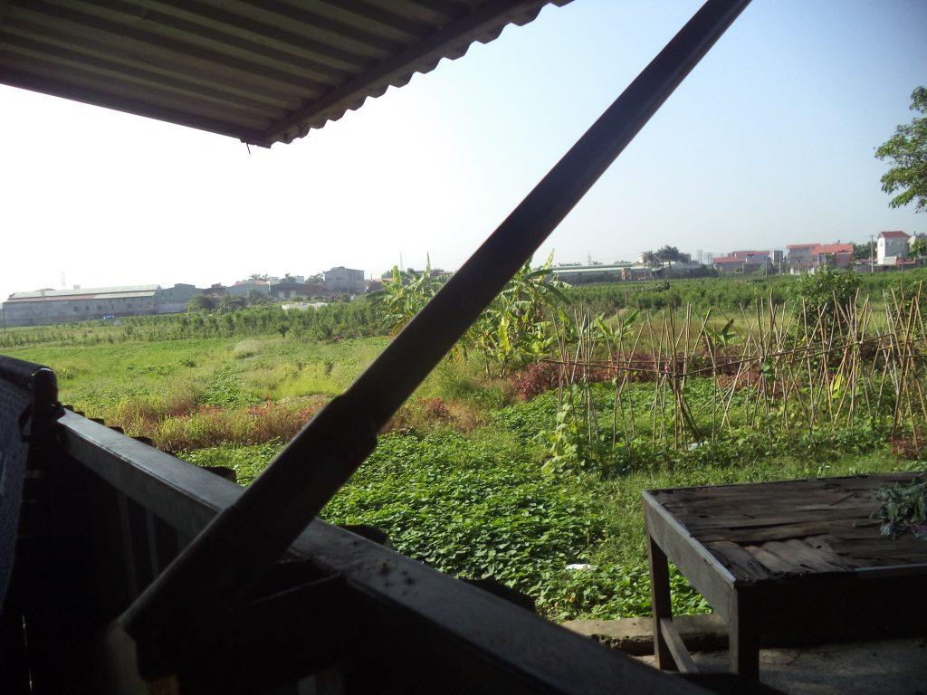Cánh đồng trước khu Trại giam Kế của tỉnh Bắc Giang.